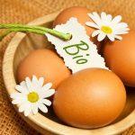 био яйца