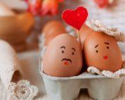 качествени яйцеклетки